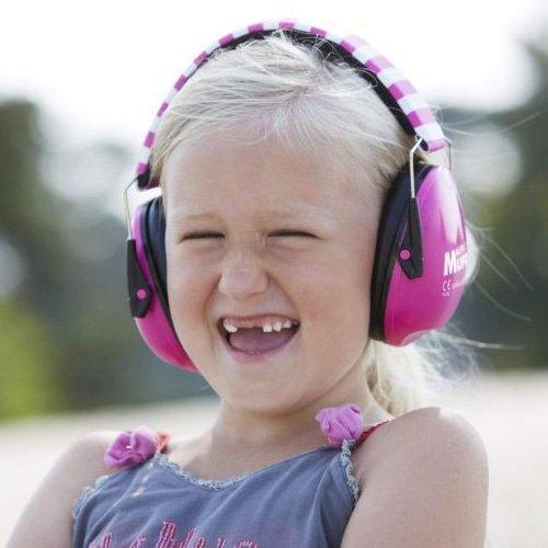 alpine muffy hearing protection